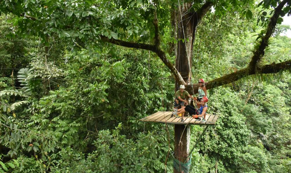 Canopy Safari Tours