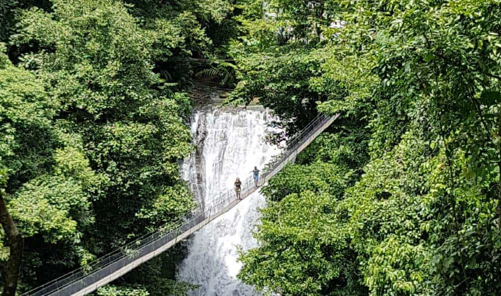 Los Campesinos Waterfalls and hanging Bridges