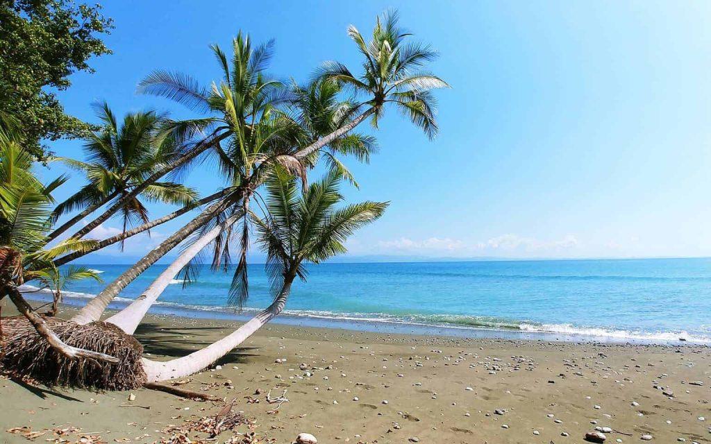 oceanfront luxury vacation rental